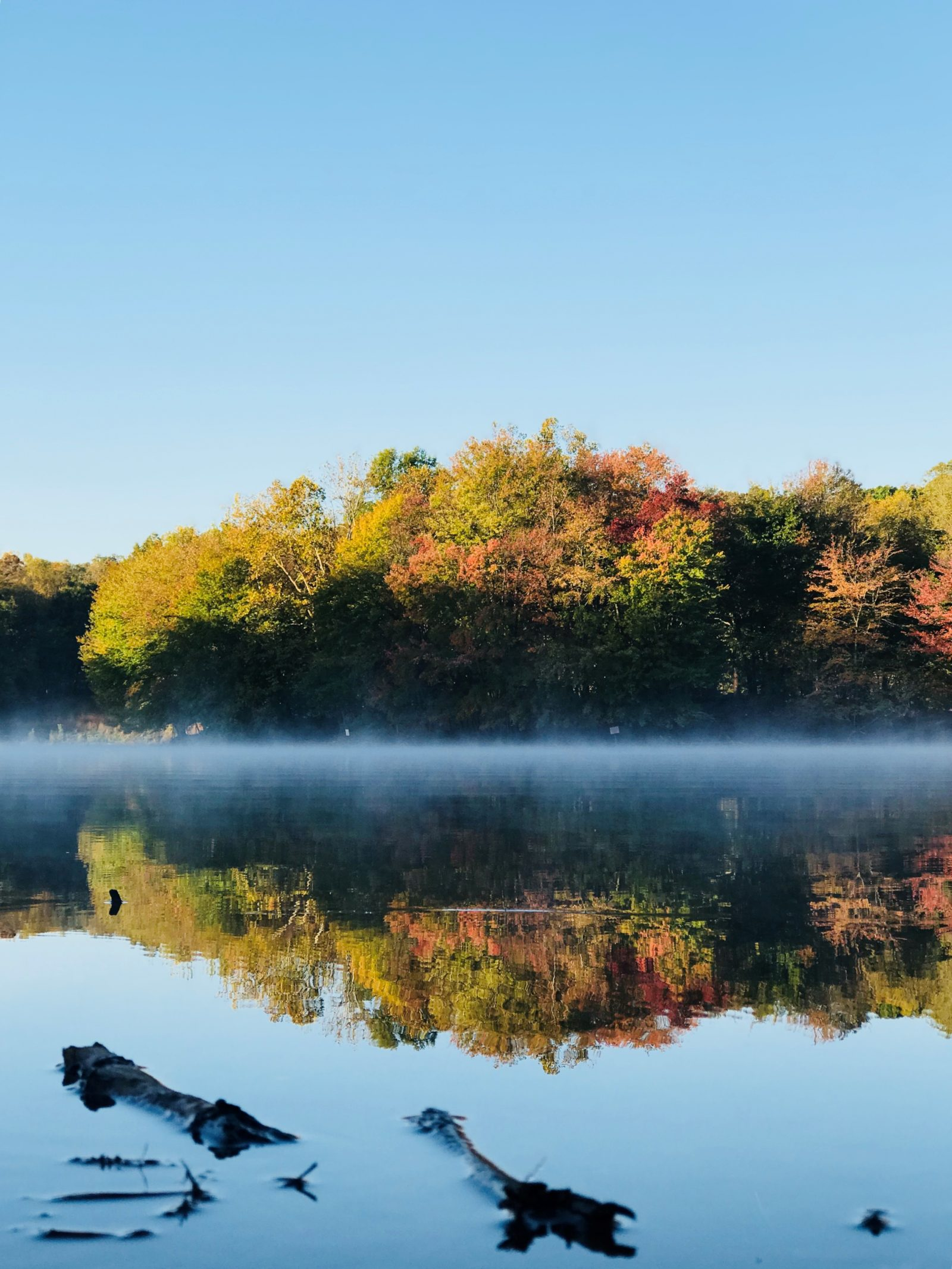 Lake Needwood in the Morning