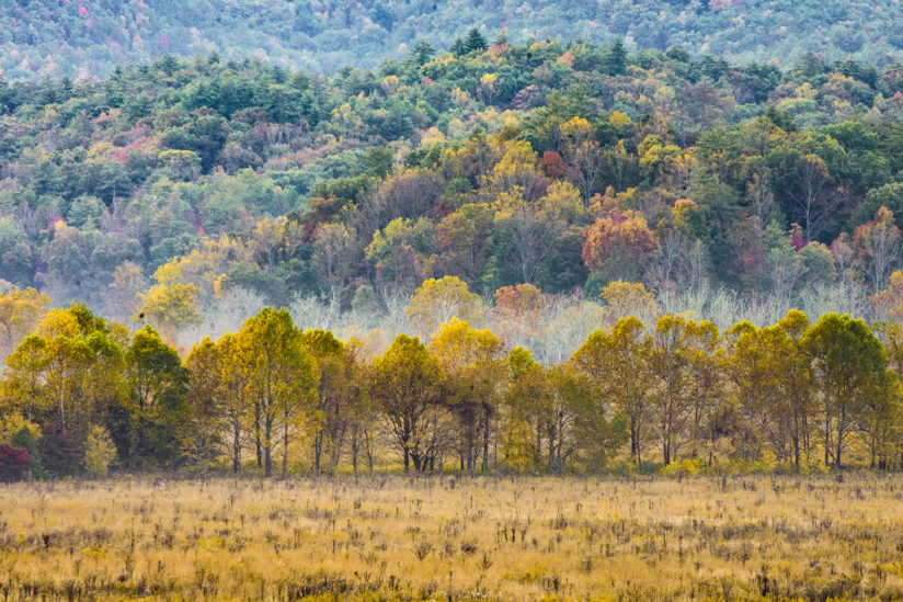 Autumn in Cades Cove