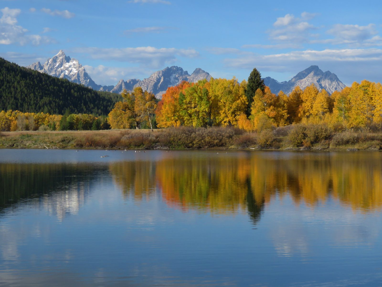The Other Side of Oxbow Bend