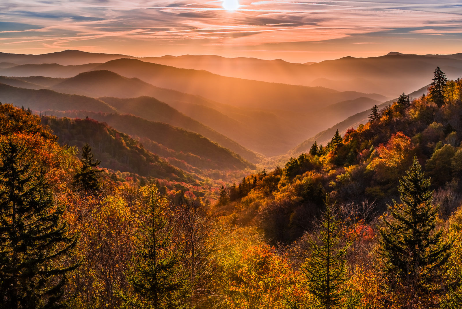 Gold in the Valley | Great Smoky Mountains National Park