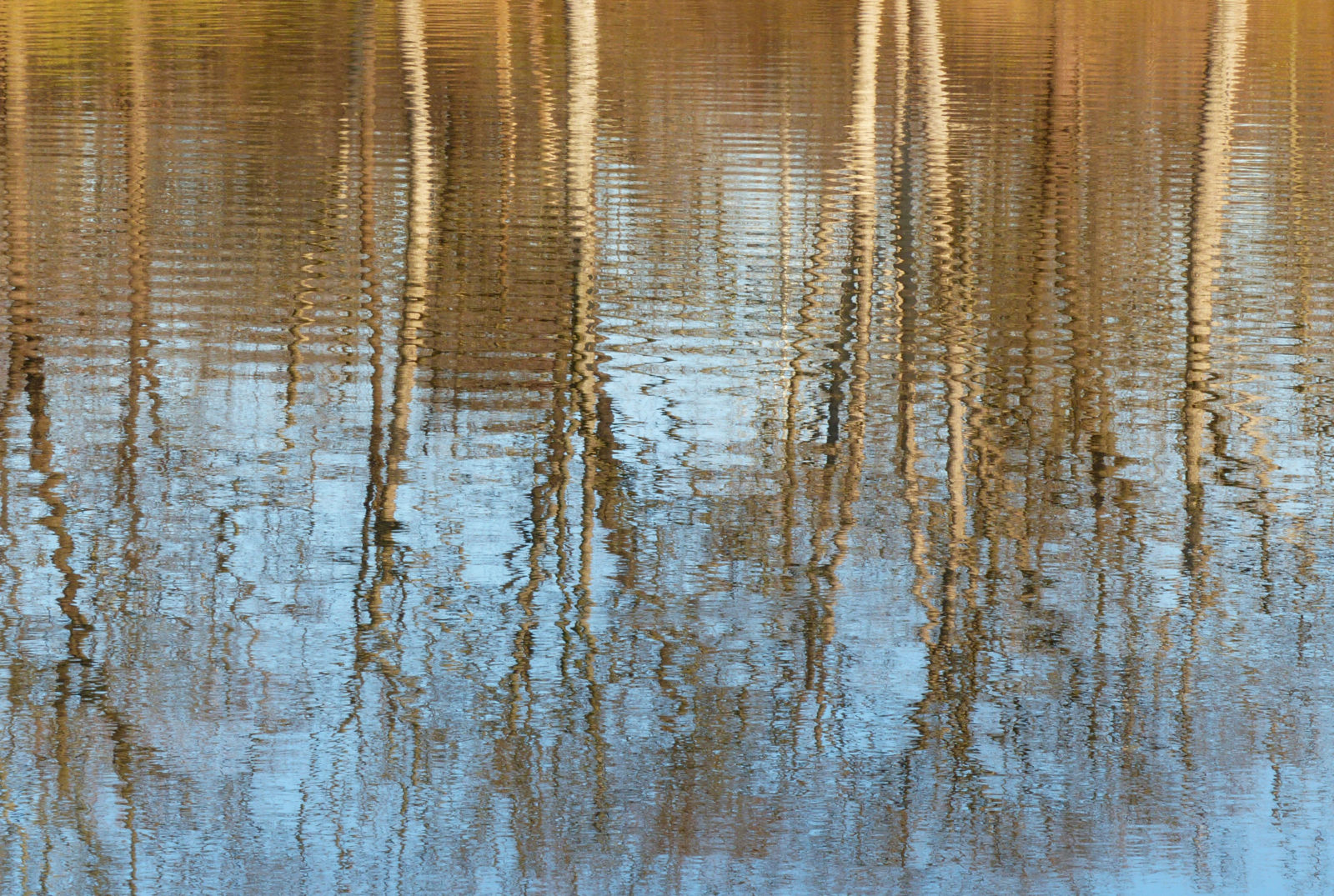 Reflections and lines