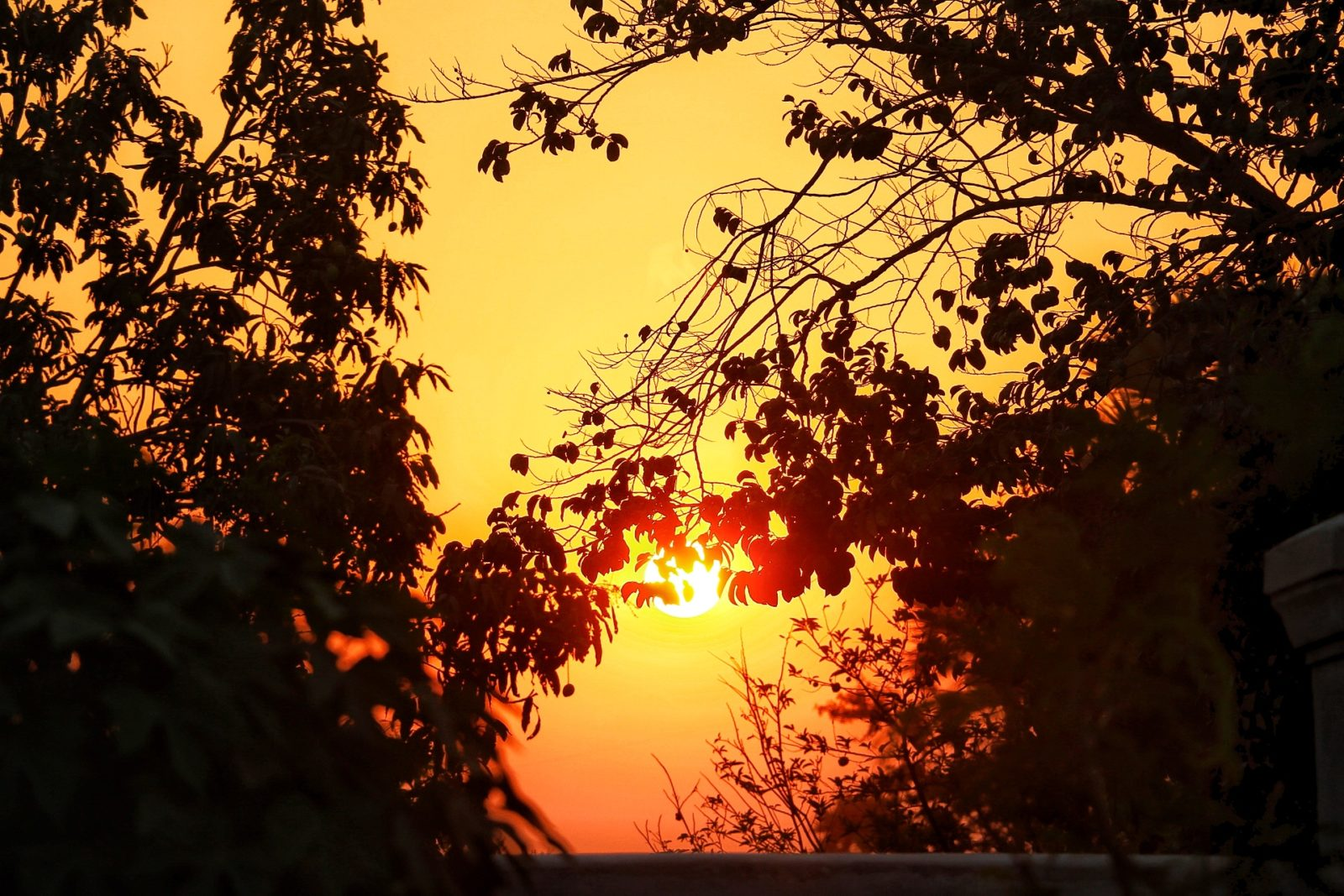 In Home Sunset