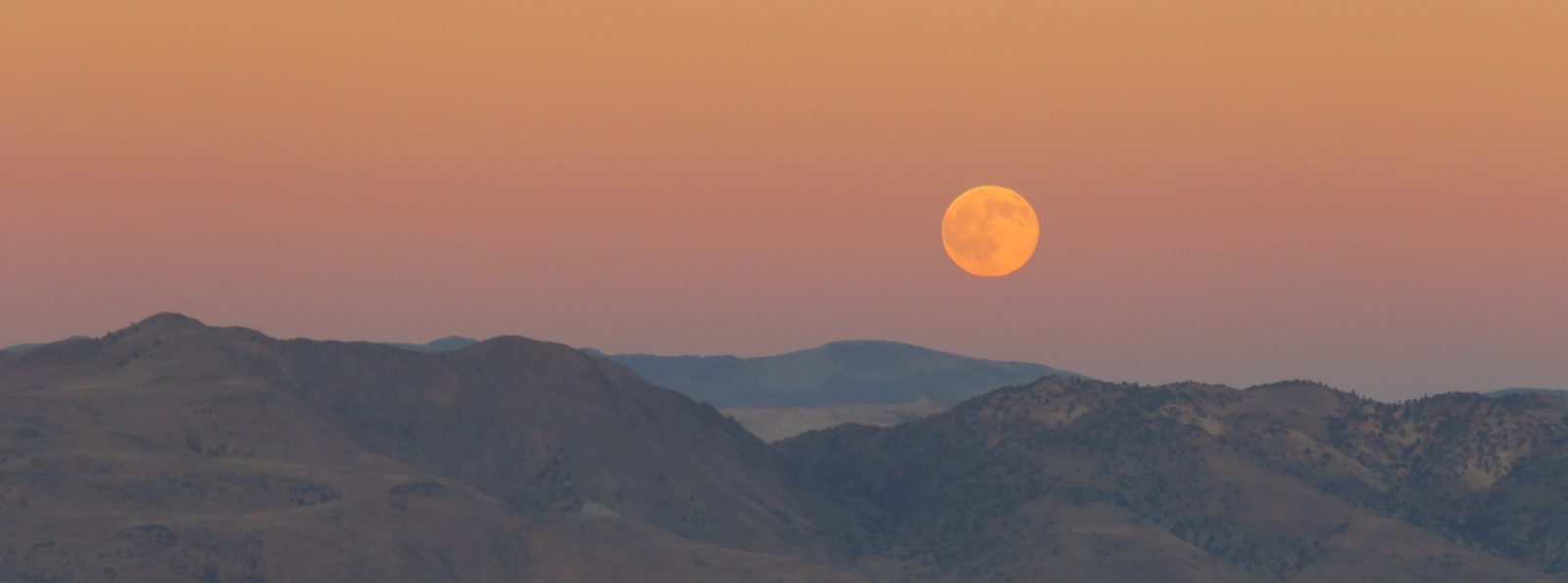 Moonrise at Sunset–the Backyard View