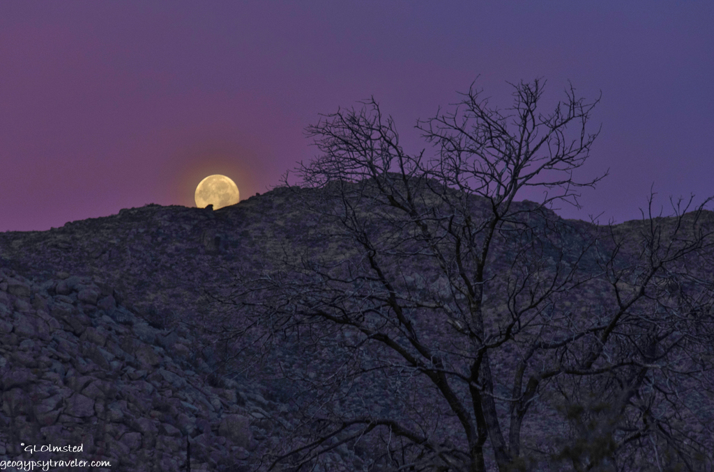 Moonset at sunrise Yarnell AZ