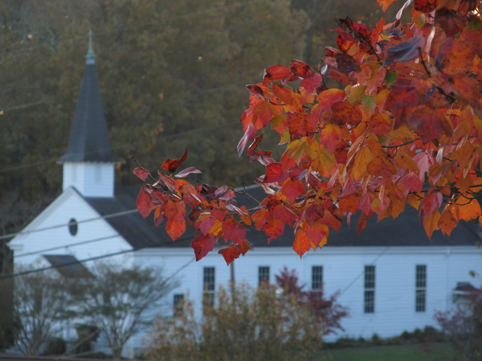 Fall Leaves and Church