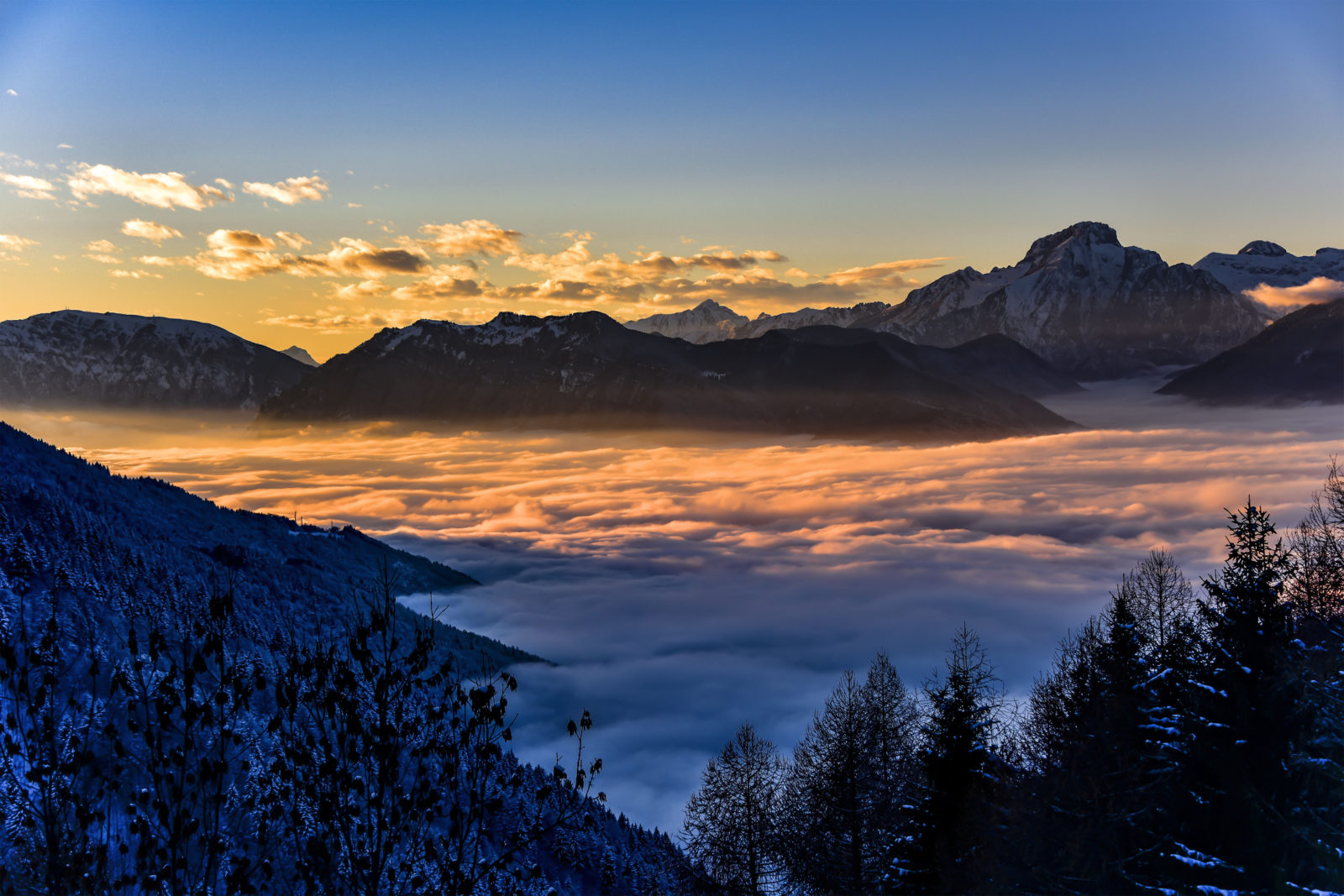 Fog on the valley