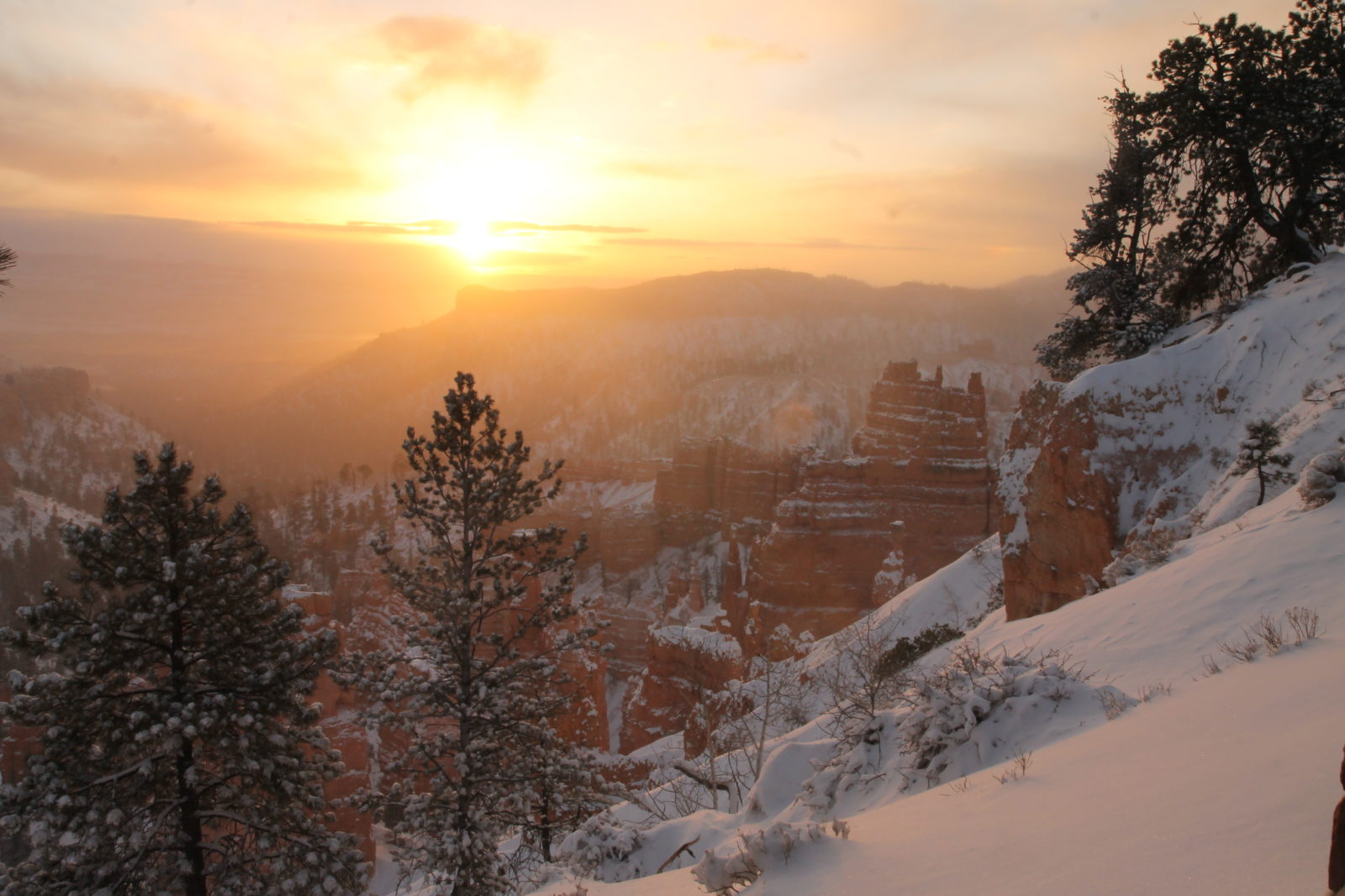 Frosted Bryce Canyon