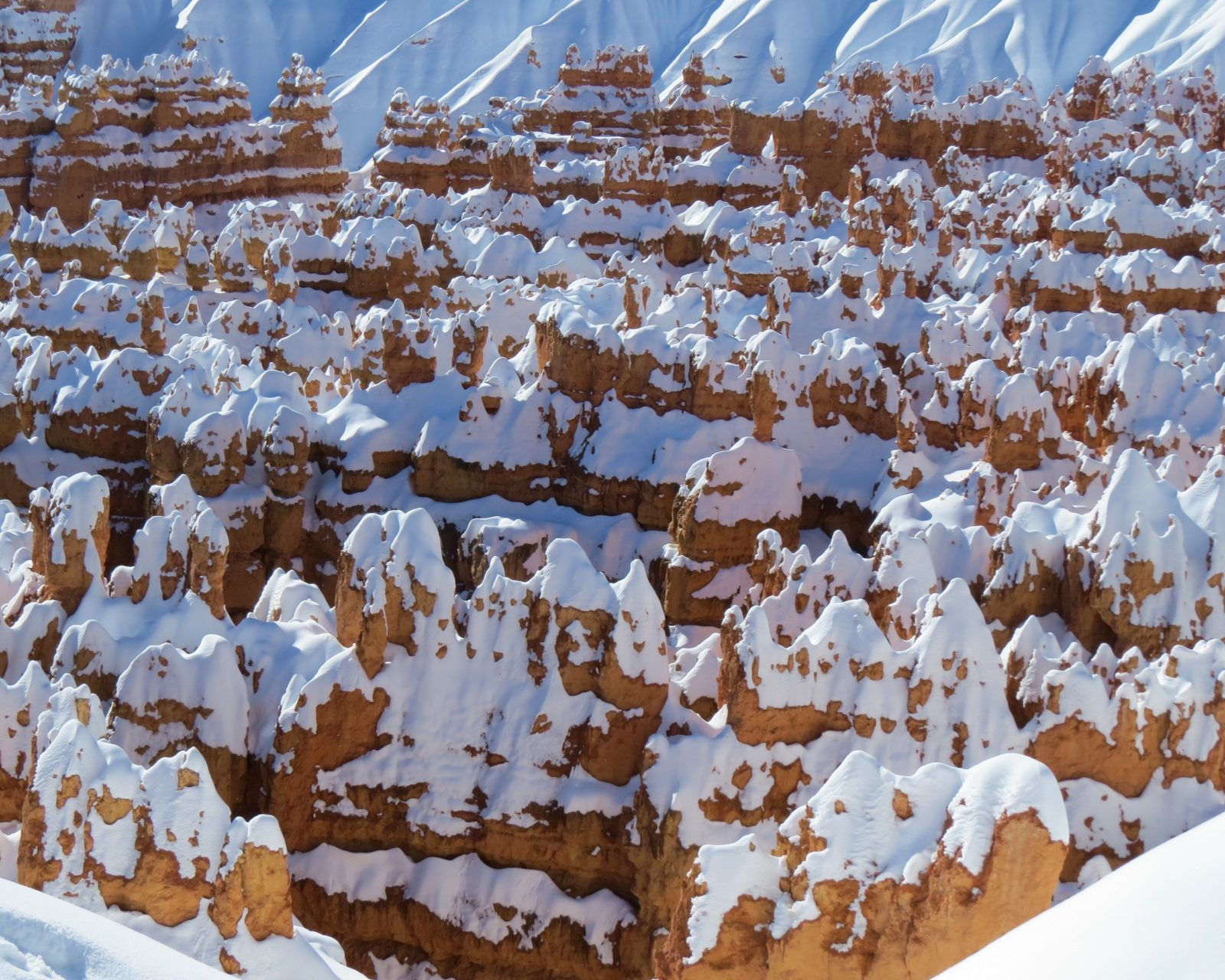 Hoodoos under Heavy Snow