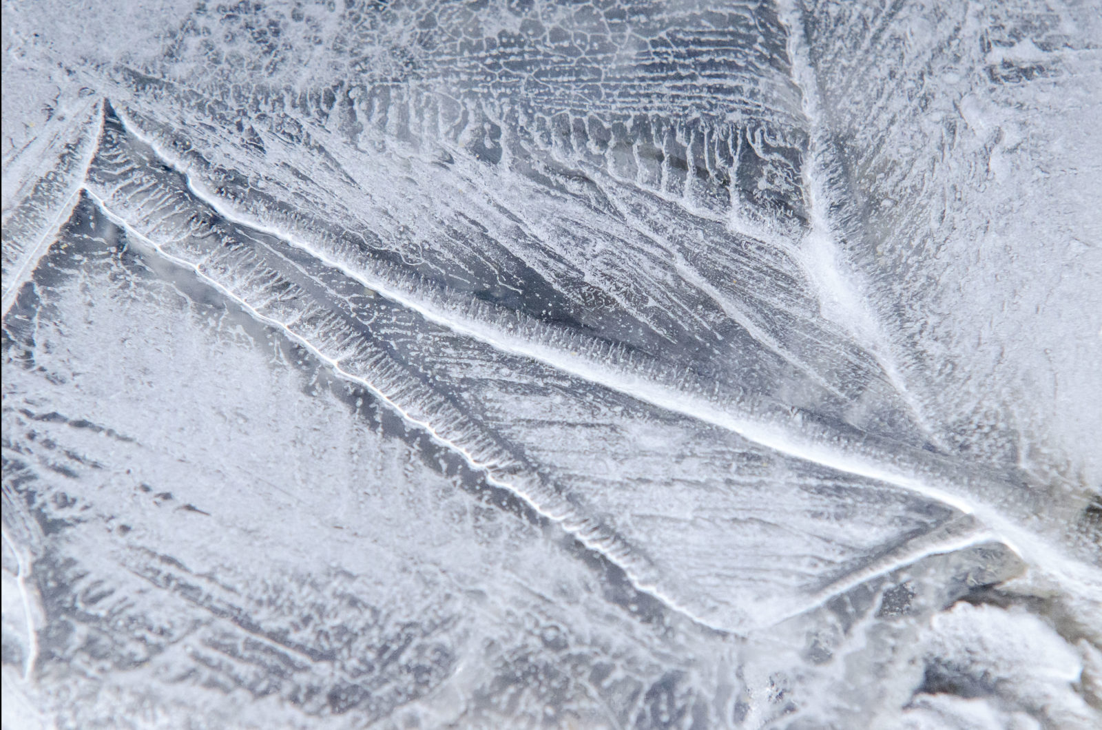 Frozen Patterns Etched in Time