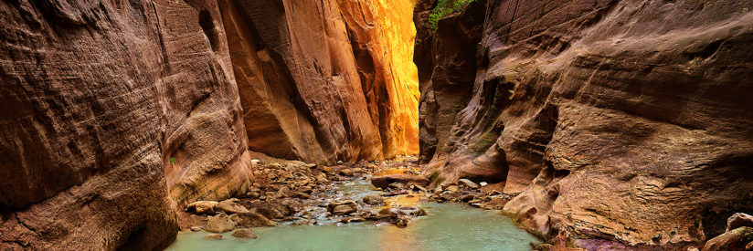 Among the Narrows