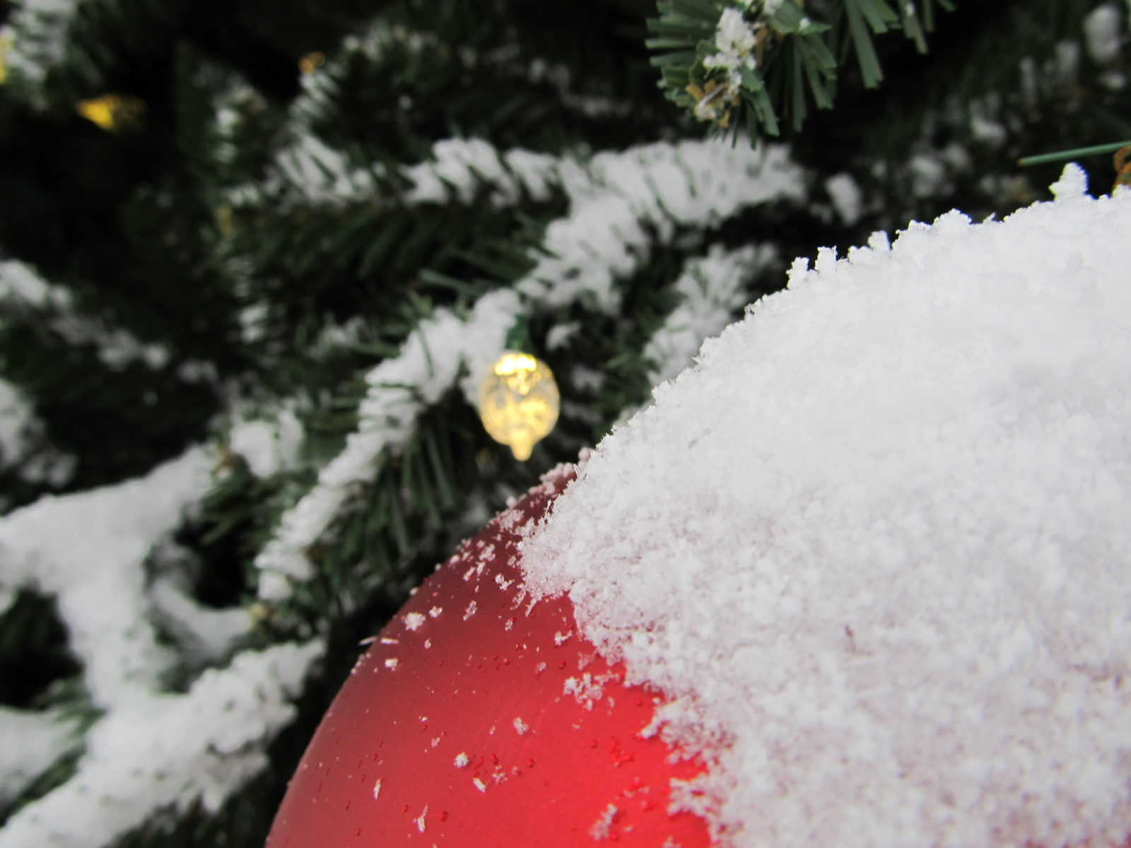 Jackson Square Christmas Tree Ornament in the Snow