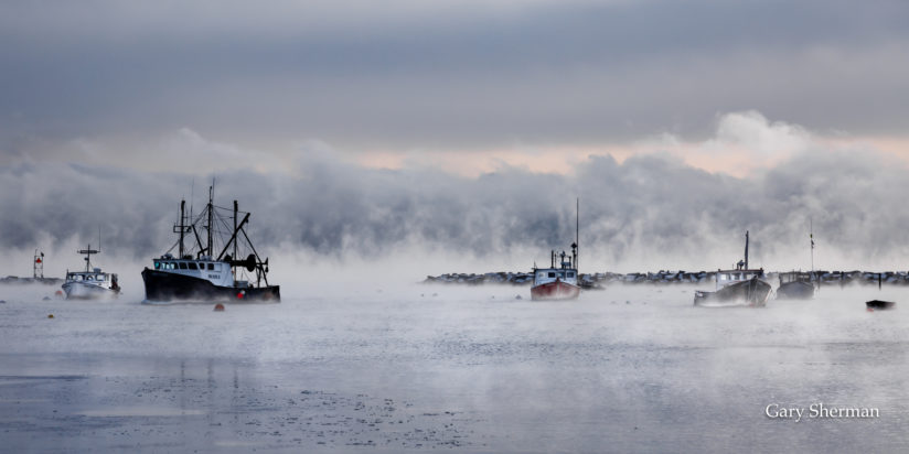Sea Smoke Harbor
