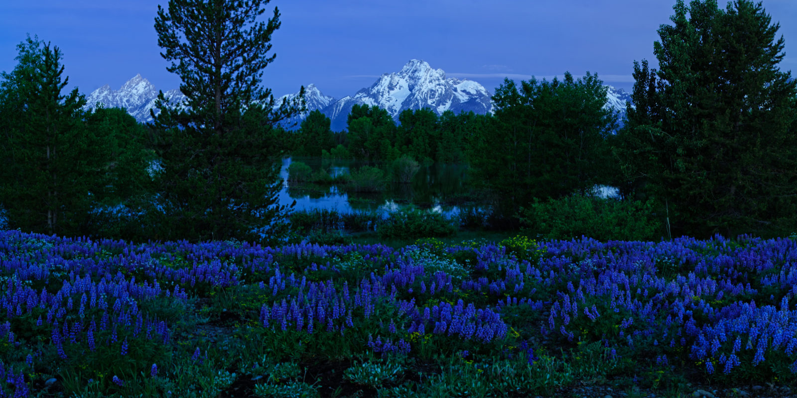 The Grand and Mount Moran