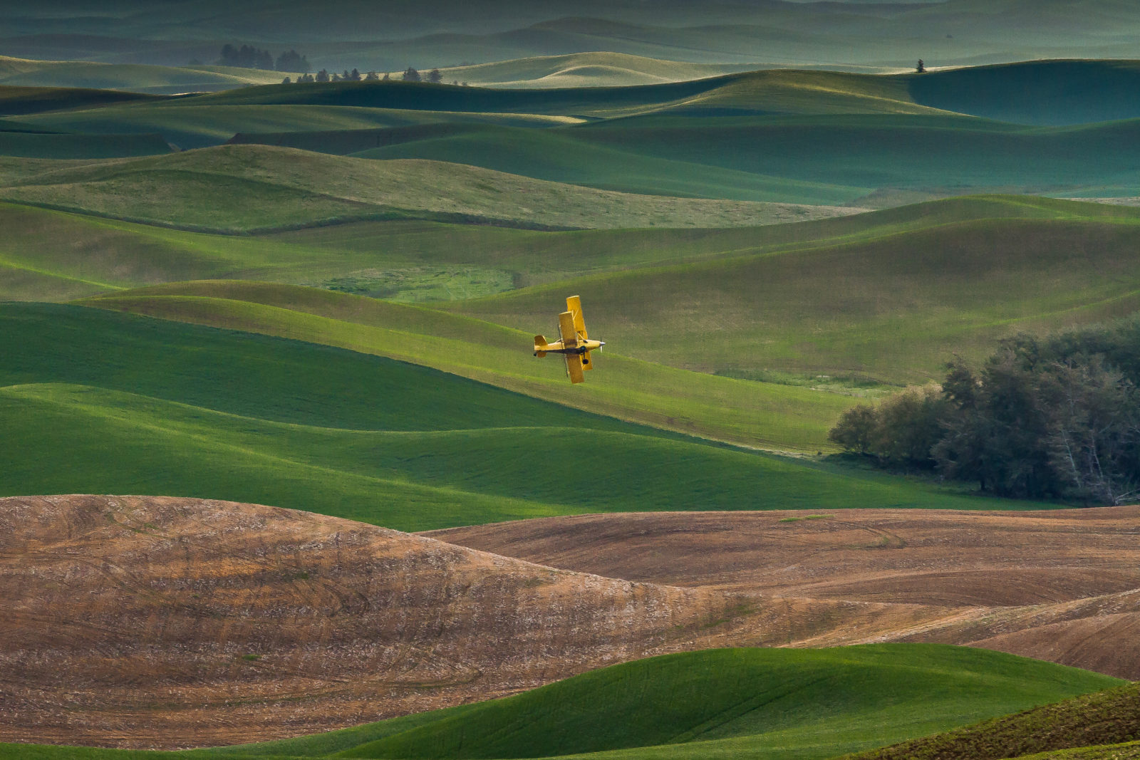 Plane Over The Palouse