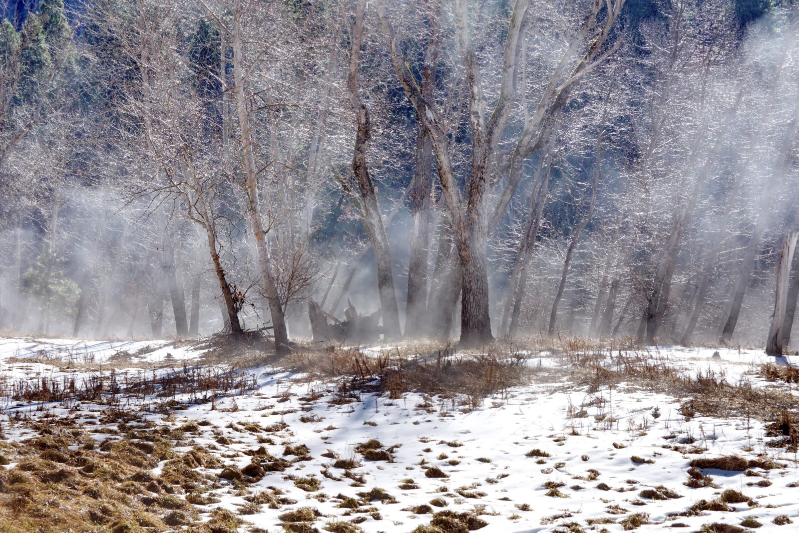 Snow, Mist, and Water