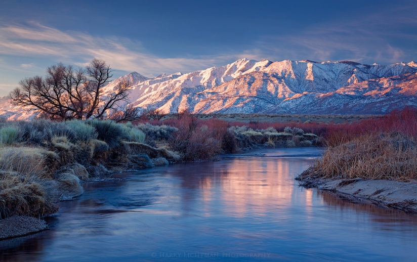 Owens Valley Spring