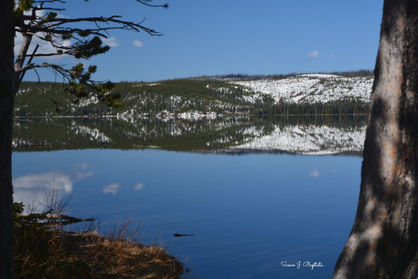 Reflective Lake in Yellowstone