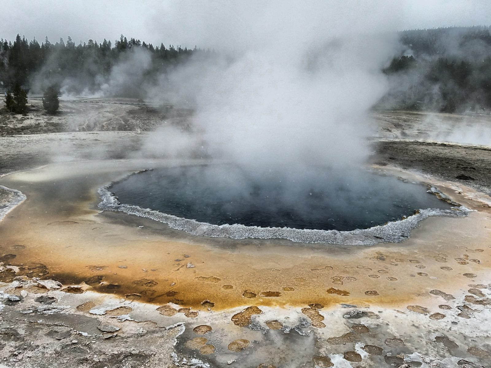 Crested Pool, Yellowstone Nat'l. Park