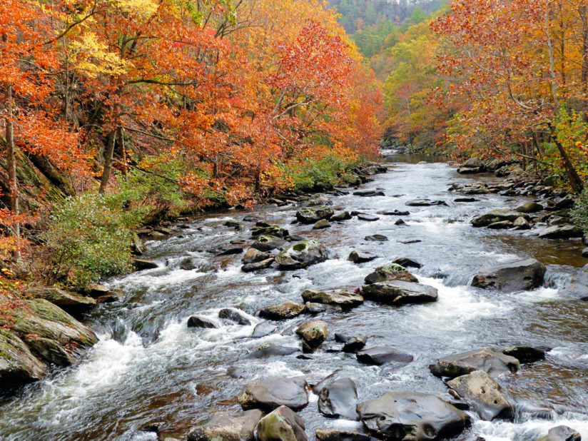 Long view of Tellico River