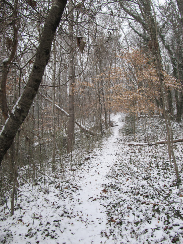 Greenway Entrance in the Snow2