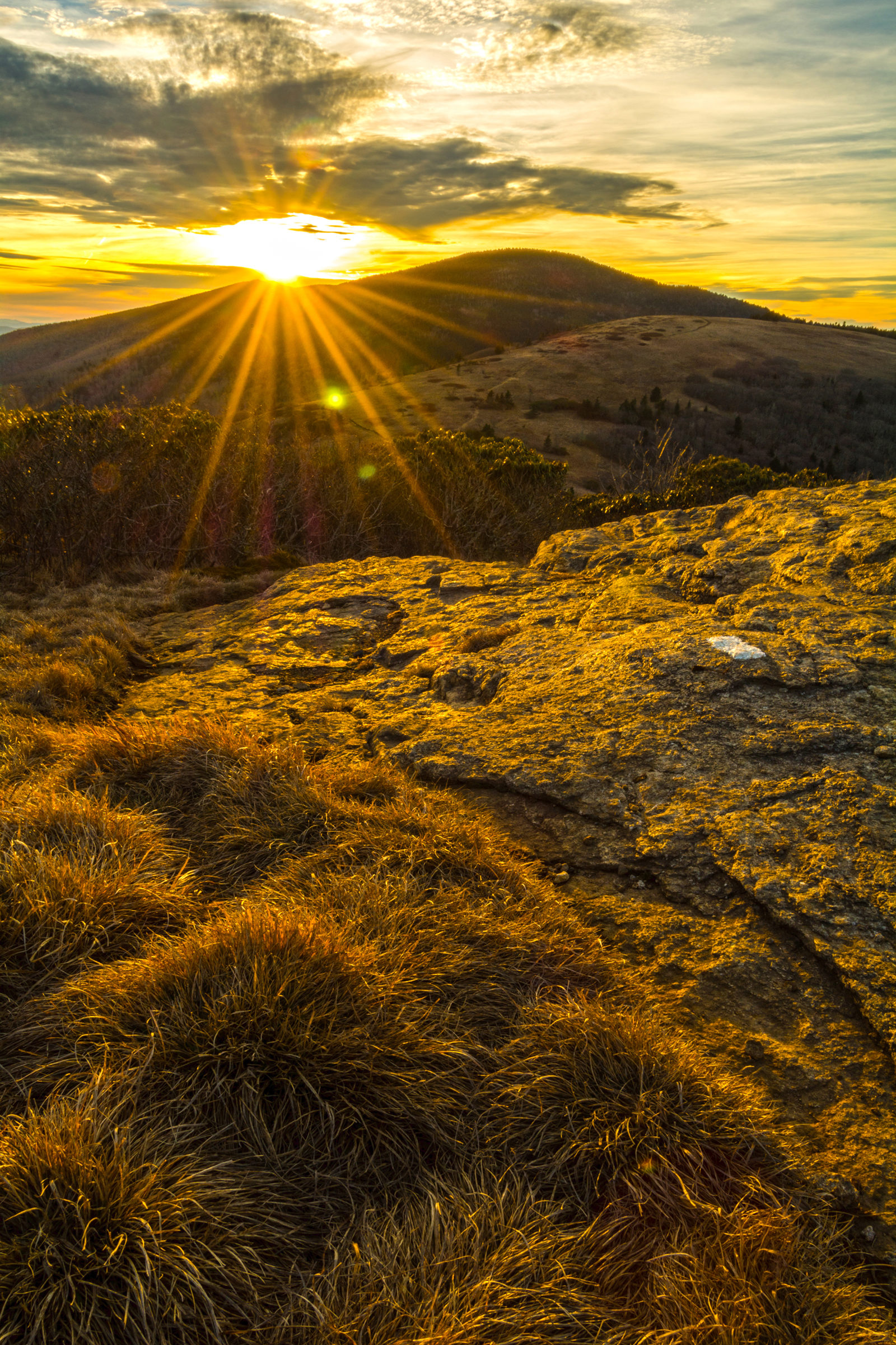 Golden Sunset Over Roan