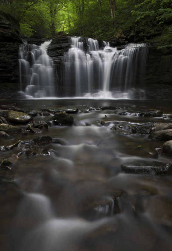 Ricketts Glen Peace
