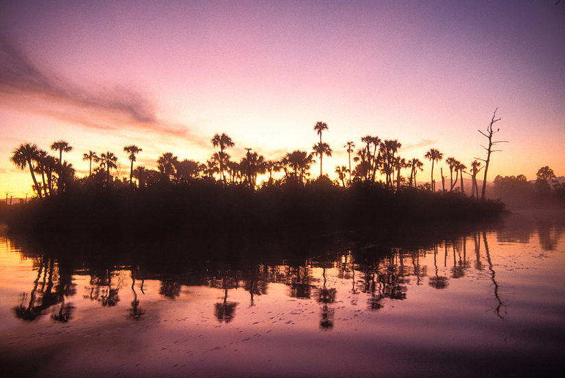 Loxahatchee River at Sunrise #9
