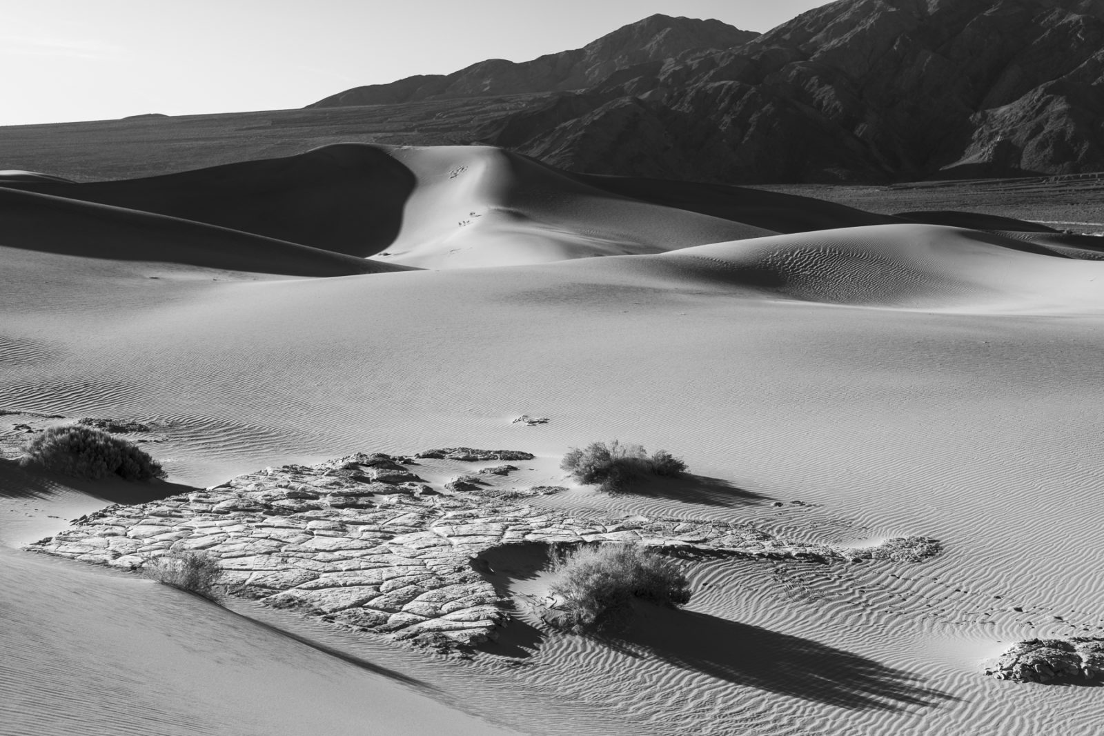 Death Valley, Early Morning