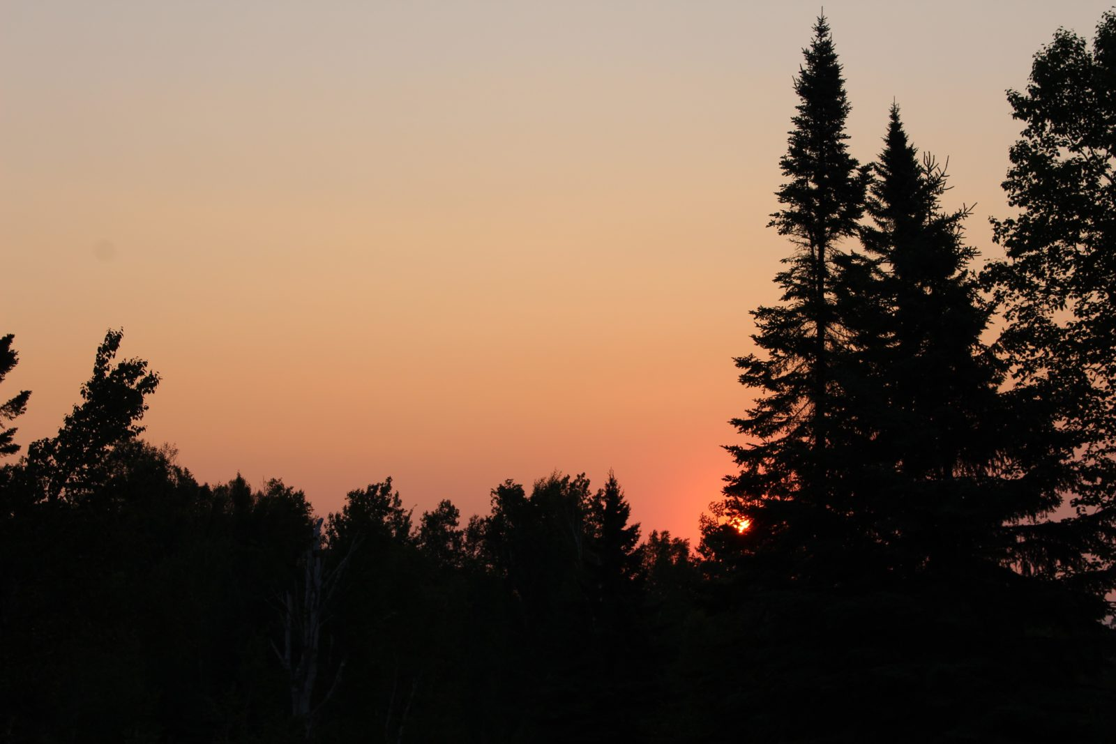 Northwoods Sunrise