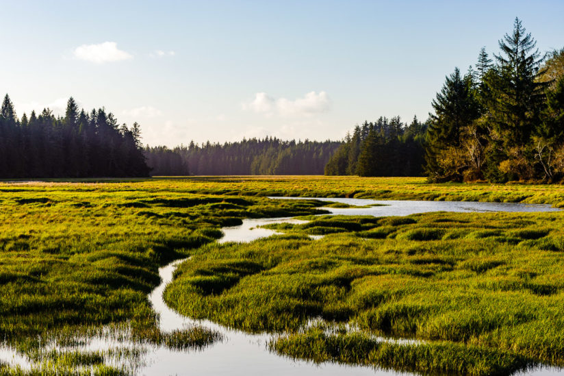 Niawiakum River Estuary, Washington