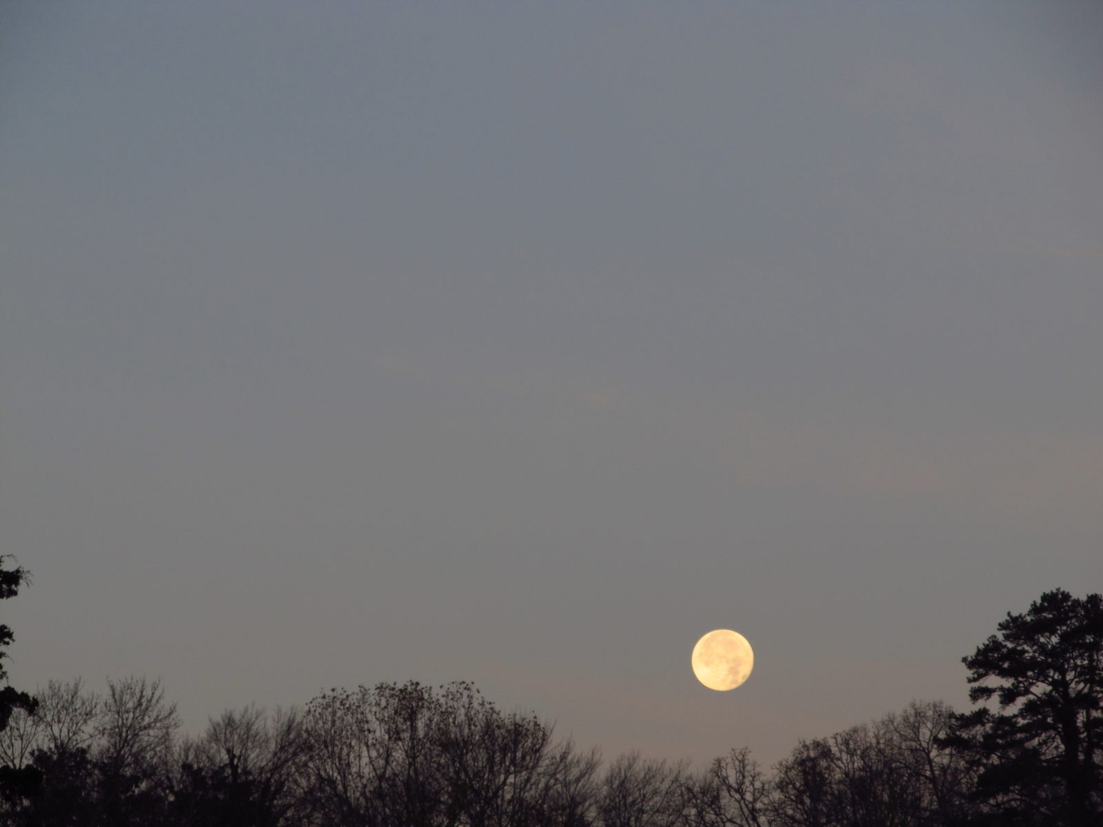 December Morning Super Moon