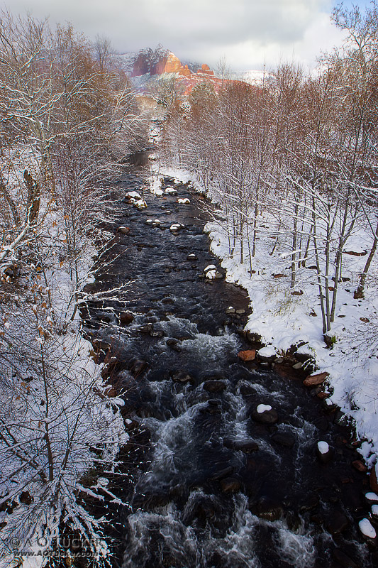 Winter Beauty Of Oak Creek