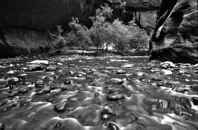 little virgin river