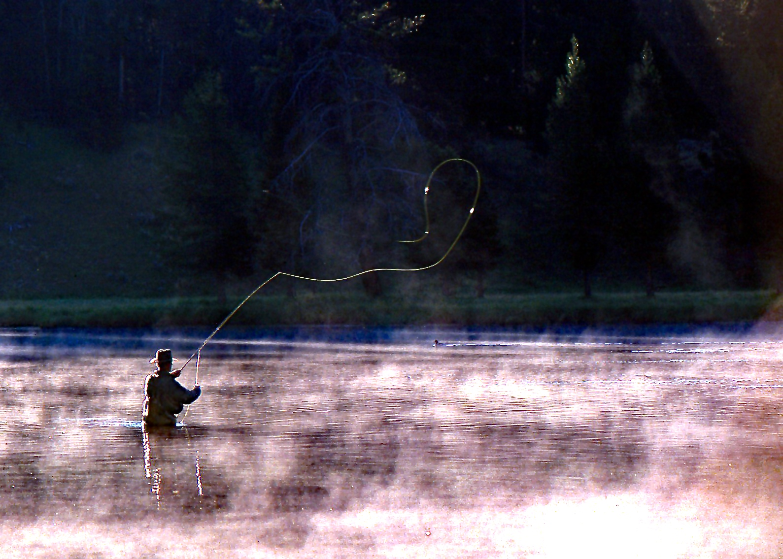 Yellowstone Fly Fisher
