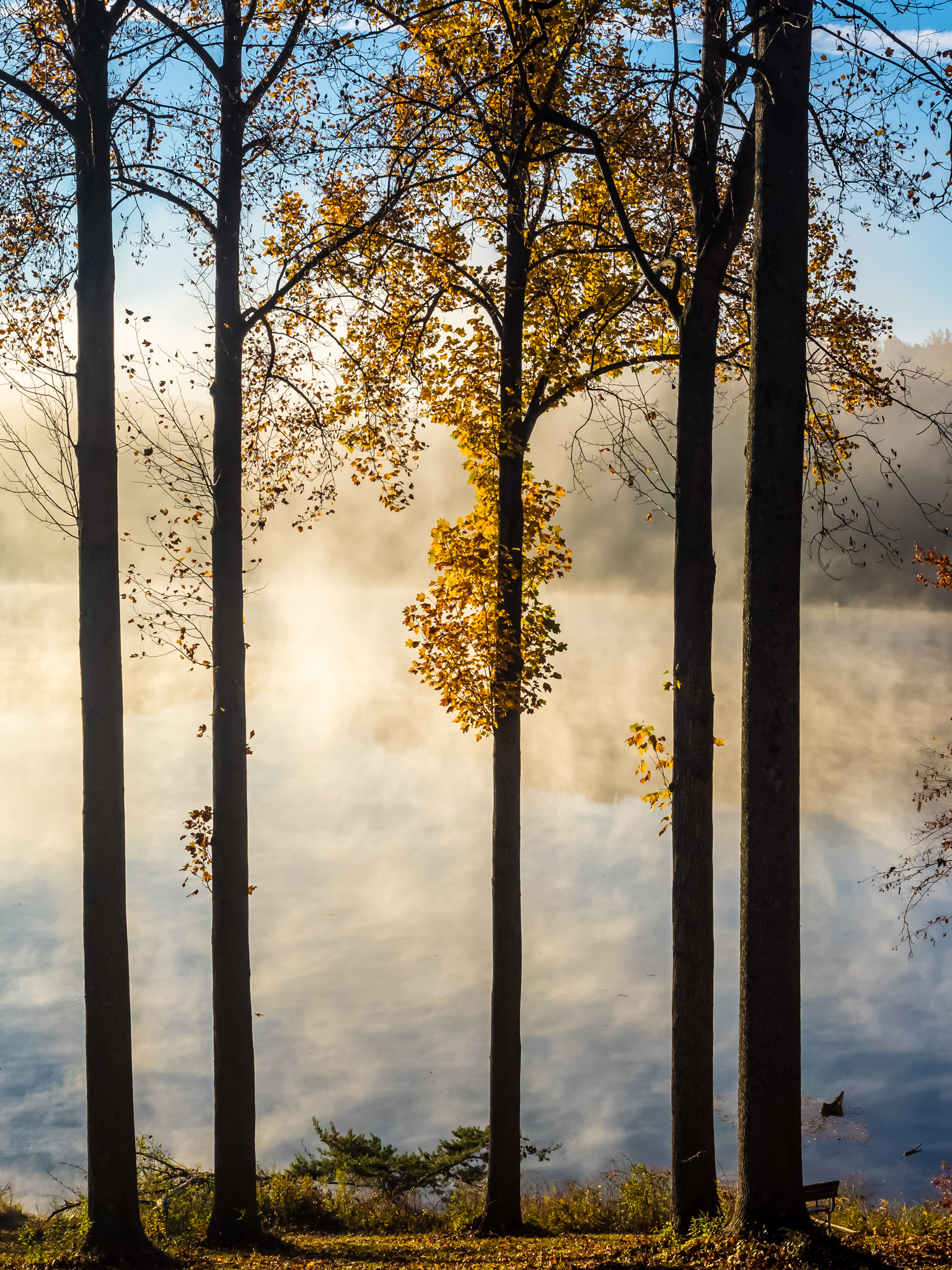 Morning Mist on Clopper Lake