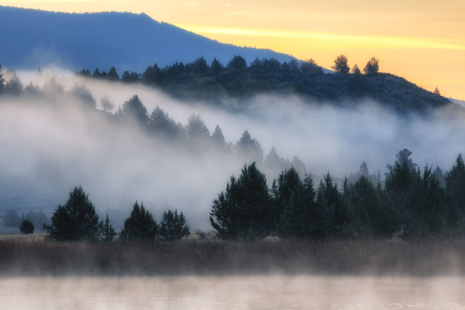Shasta Valley Early Morning Mist