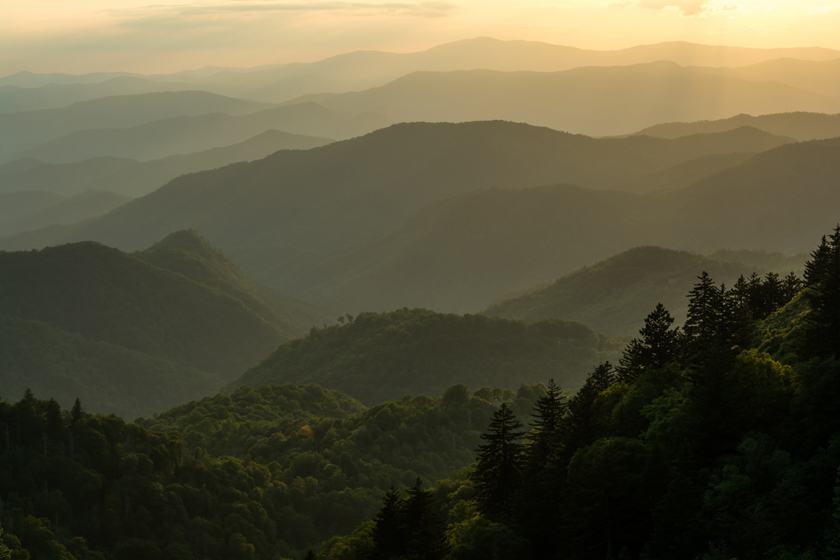 Evening Light on the Blue Ridge Mtns.