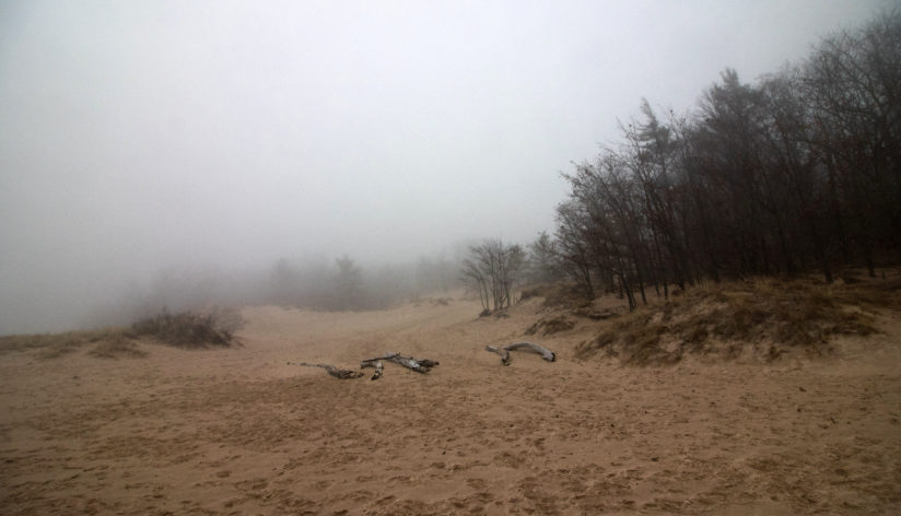 Hoffmaster Dunes in the Fog