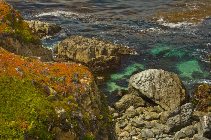 Colorful Shoreline at Garrapaga State Park