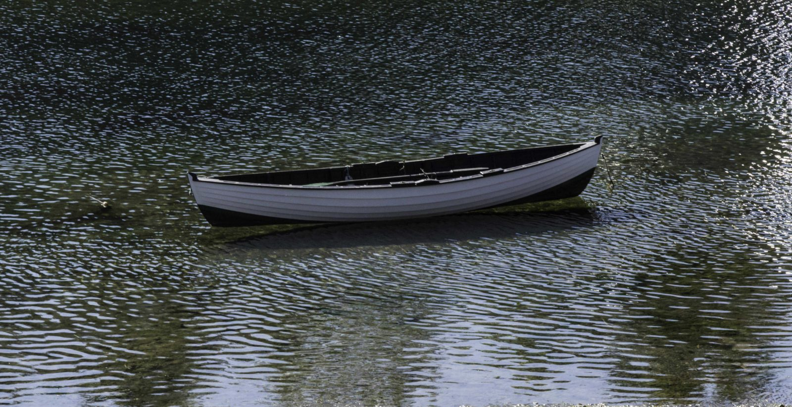 boat floating in shallow water