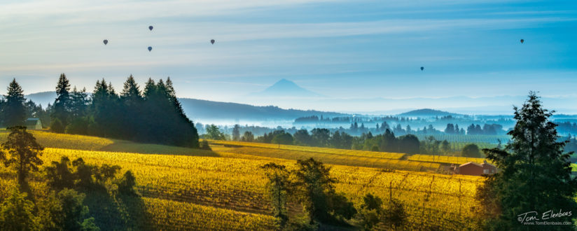 Willamette Valley Sunrise