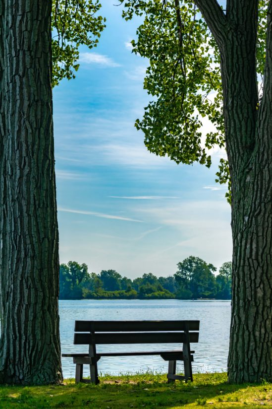 Framed Park Bench