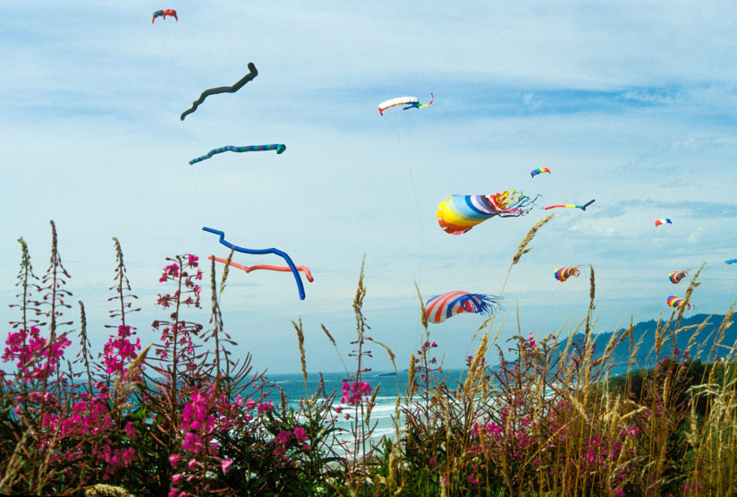 Kites, Oregon Coast