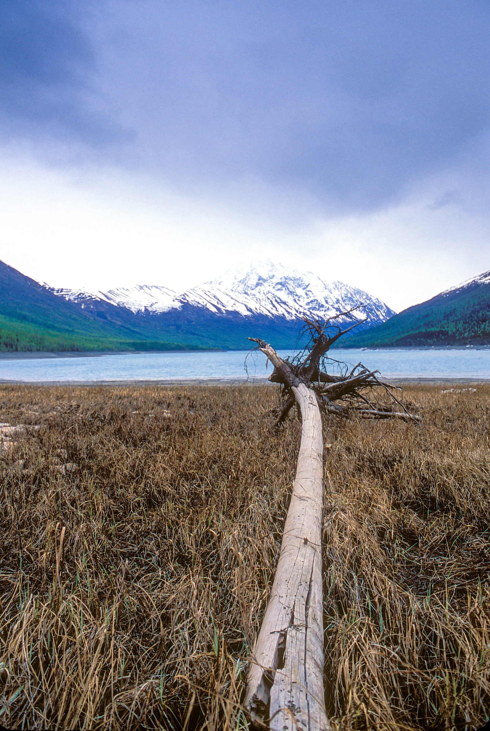 Eklutna Lake Casualty