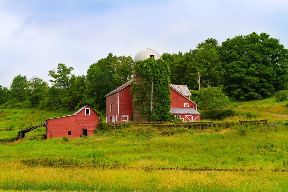 Classic Barn and Silo