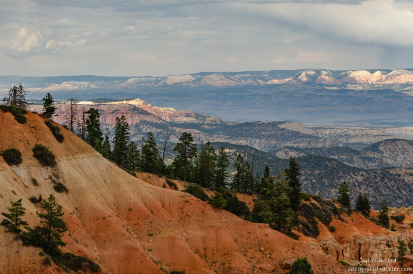 Layers and Light at Bryce Canyon