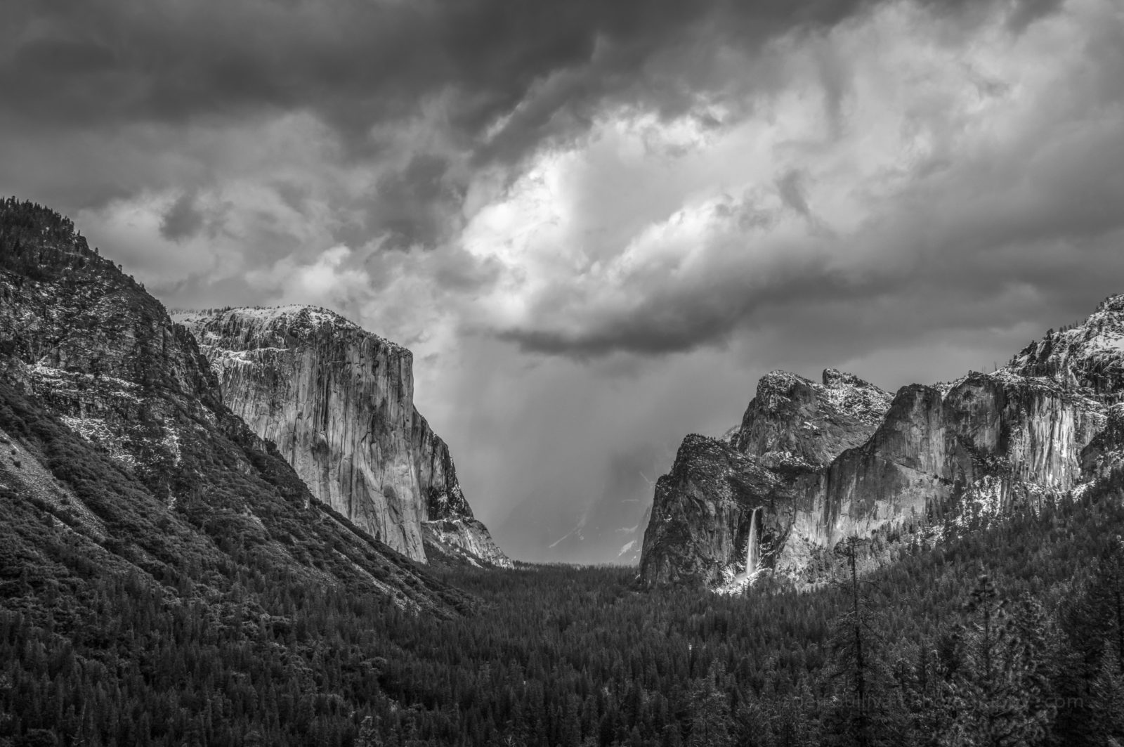 Snow Showers in Yosemite Valley
