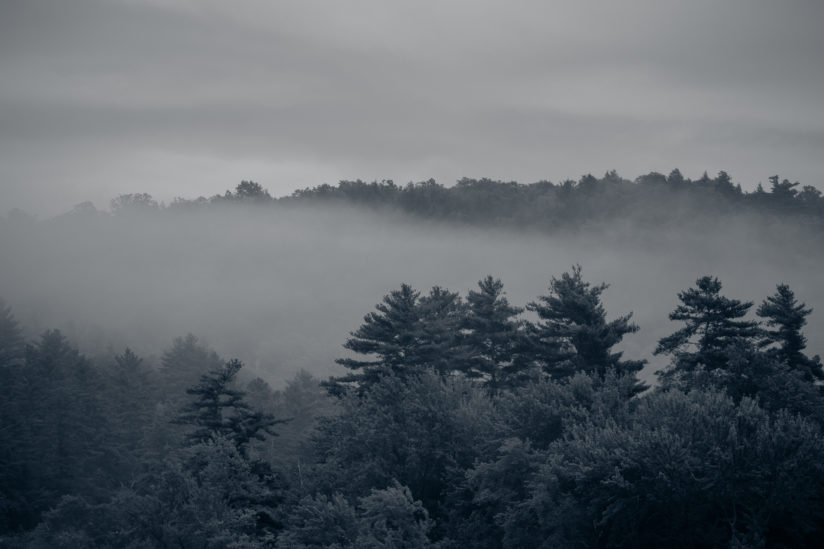 An August morning in the Adirondacks