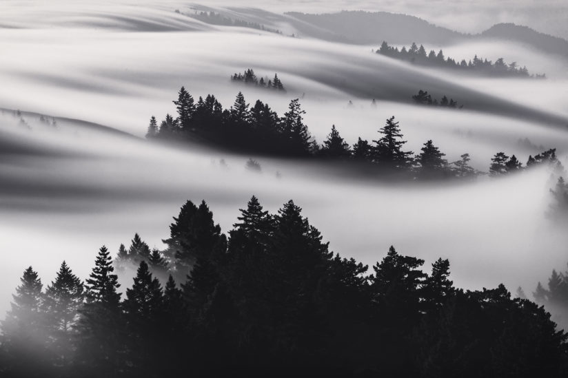 Fog Rivers