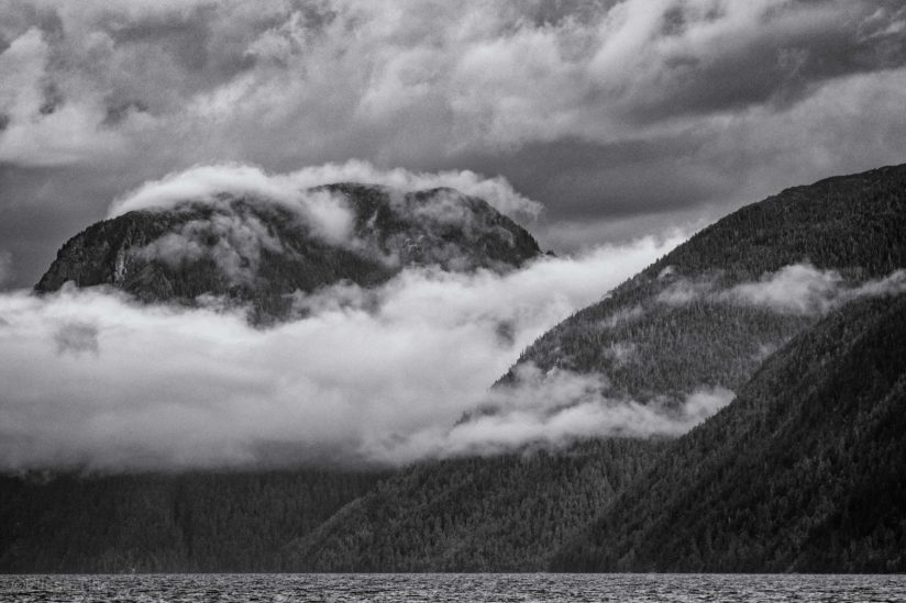 Great Bear Rainforest Landscape